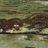 La noyée et le calamar (détail)