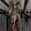 Racines - artiste: Simon / Installation: Yves Levasseur, Emmanuel Mottu
