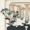 Planche de champignons I - cornes, clitocybes et pied bleu